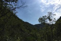 Val Vandeno-7